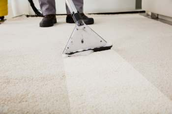 Algester carpet cleaning