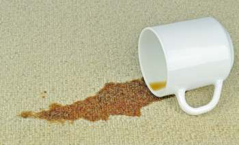 carpet cleaning Algester