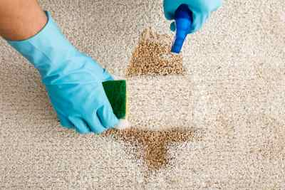 carpet cleaner East Ipswich