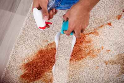 The Perfect Carpet Cleaner in Redbank Plains