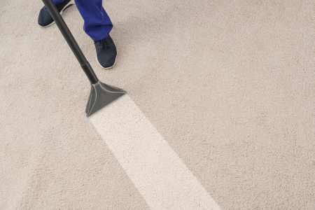 Professional Carpet Cleaners in Logan