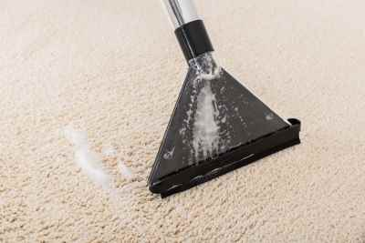 Emergency Carpet Cleaning in Springfield